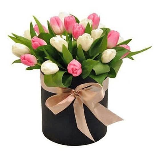 Caja Box 20 Tulipanes dos Tonos