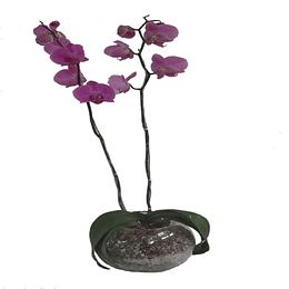 Orquidea en Esfera de Vidrio con piedras y Cuarzo