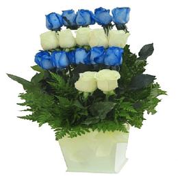 Armonia de Rosas en Base Blanca