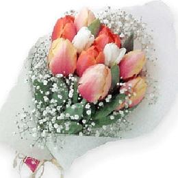 Ramo de 10 Tulipanes