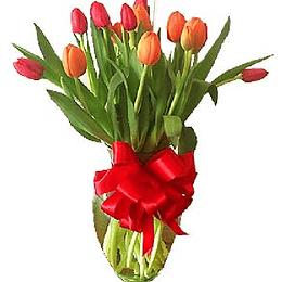 Florero 15 Tulipanes