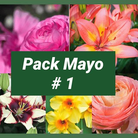 PACK OTOÑO MAYO #1