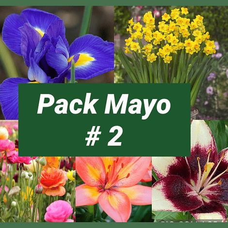 PACK OTOÑO MAYO #2