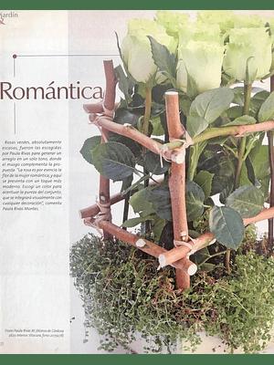 Revista Jardín