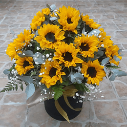Box con 20 Girasoles