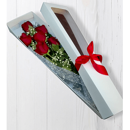 Caja de 6 rosas Rojas