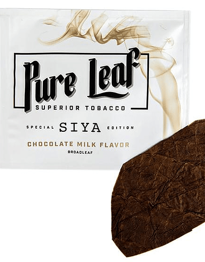 Pure Leaf Wraps X SIYA - Chocolate Milk