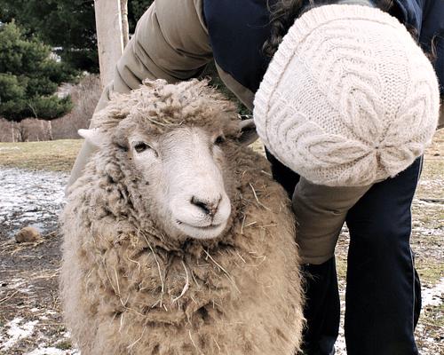 """Gorro de lana """"Antler Toque"""" tejido a mano - Unisex - Certificado Wildlife Friendly®"""