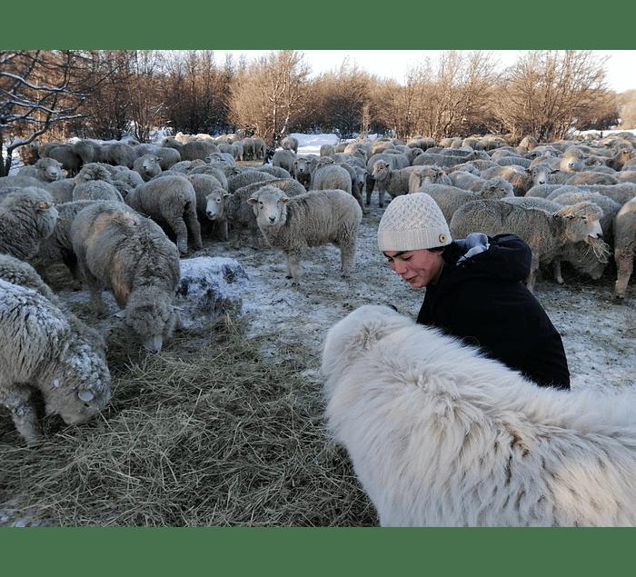 Gorro de lana