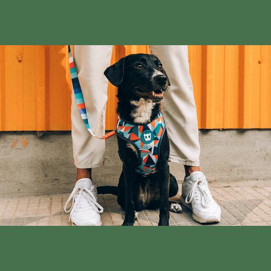 Arnés Air Mesh Plus Zeedog modelo Ella