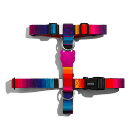Arnes H ZeeDog modelo Prisma