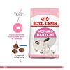 Royal Canin Babycat 1,5Kg