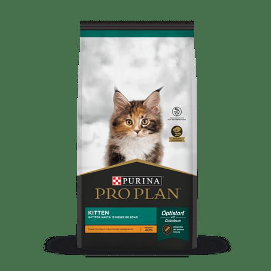 Pro Plan Gato Kitten