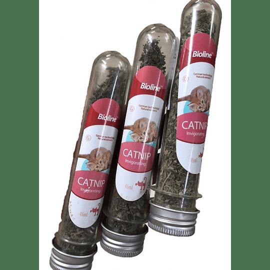Bioline Catnip/Hierba Gatera Tubo 5g