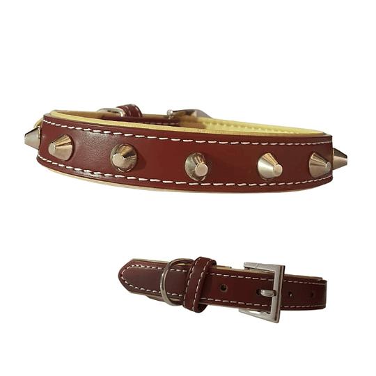 Collar Perro Eco-Cuero Punta Redonda Talla M