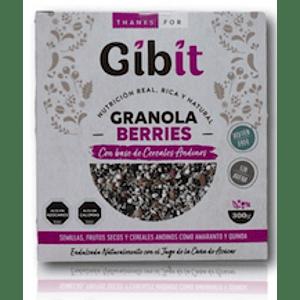 Granola Berries Gibit 300Gr