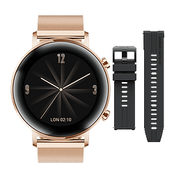 Watch GT2 Elegant 42mm