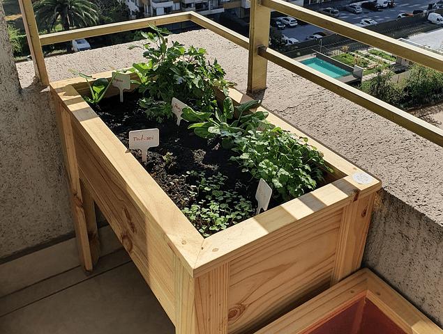 Mesa de Cultivo - Huerta urbana