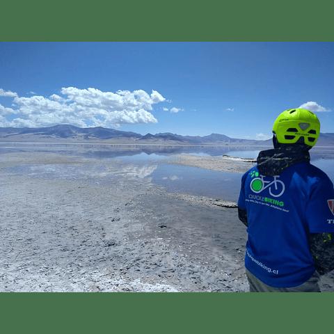 Tour on Bike Salar de Huasco y Oasis de Pica