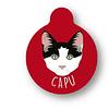 PLACA CAPU