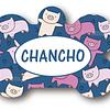 PLACA CHANCHO