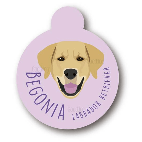PLACA BEGONIA LABRADOR RETRIEVER