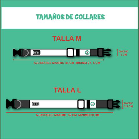 COLLAR ESTAMPADO RAYAS