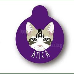 PLACA ATICA