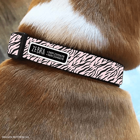 COLLAR ESTAMPADO ZEBRA