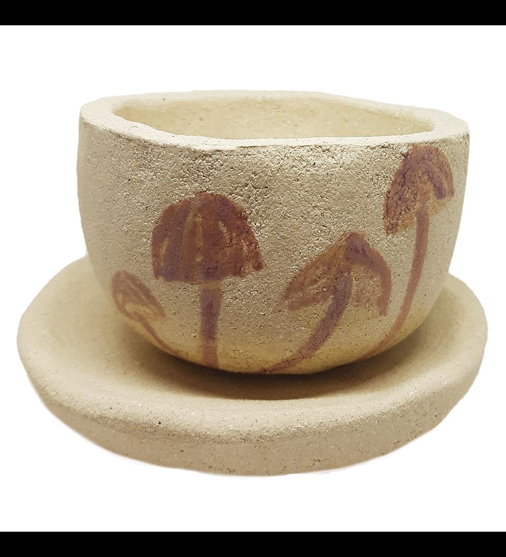 Platos y tazas de café diseño Mycena (fungi) cerámica gres