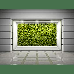 Adhesivo Windows Vision