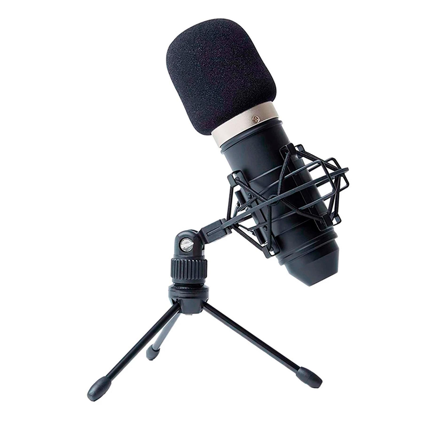 Microfono Condensador Marantz MPM-1000