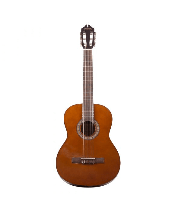 Guitarra Acústica Washburn C6NA - Nylon