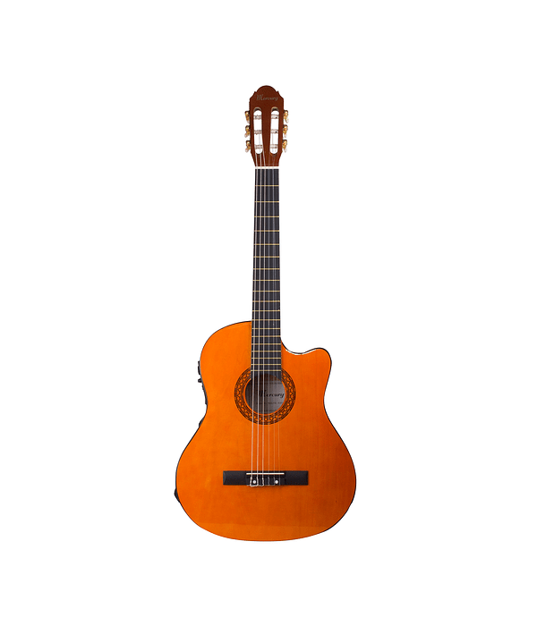 Guitarra Electroacustica Mean1 Natural Mercury