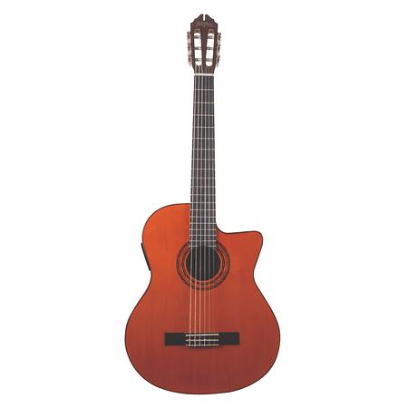Guitarra Electroacustica C5CE Washburn