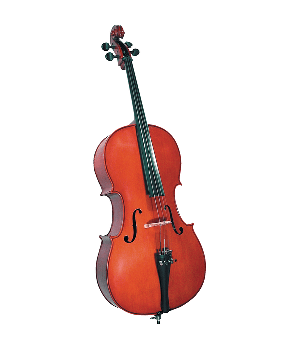 Cello HC100 4/4 Cervini