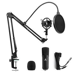 Micrófono profesional AU-A03