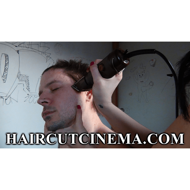 Haircut Punks