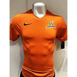 Camiseta Jaguares Entrenamiento Test Nike