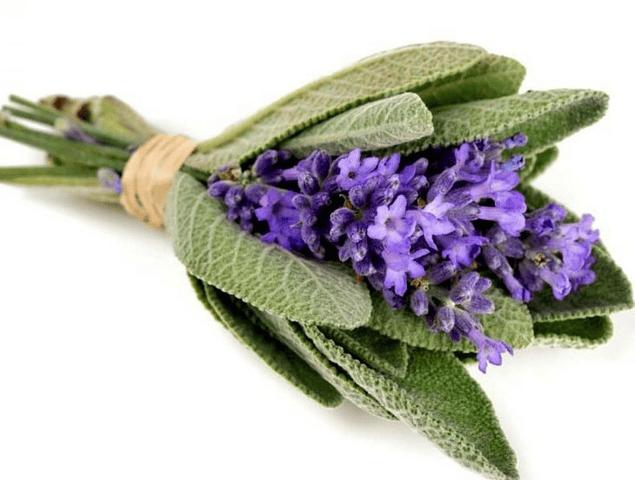 Hidrolato Salvia Officinalis
