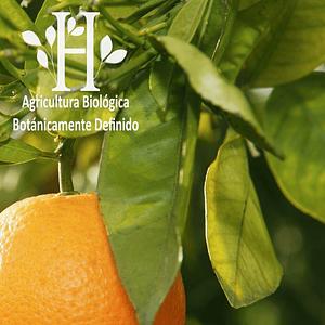 Petit Grain Bio Aceite Esencial 5 ml