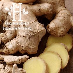 Jengibre Bio Aceite Esencial 5 ml