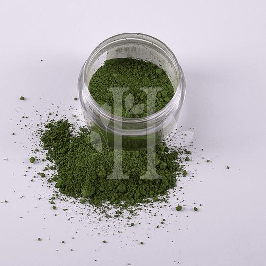 Verde Chromium Pigmento 10 gr - Image 2