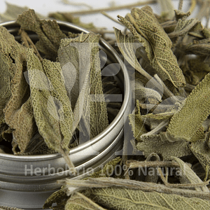 Salvia Entera Hierba 30 gr