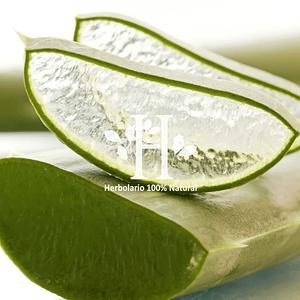 Aloe Vera Extracto HG 100 ml