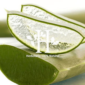 Gel Aloe Vera 100 ml
