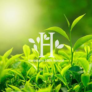 Té Verde Extracto HG 100 ml