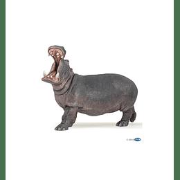 Papo Hippopotamus / Hipopotamo