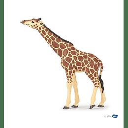 Papo Giraffe Head Raised / Jirafa con cabeza levantada
