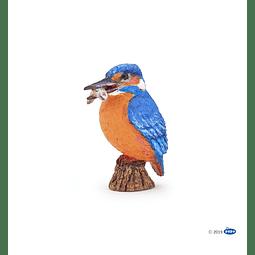 Papo Common Kingfisher / Martín pescador común